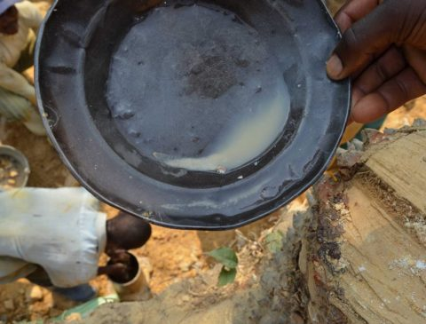 First Responsible and Conflict-Free Artisanal Gold Supply Chain Operational in Eastern Congo